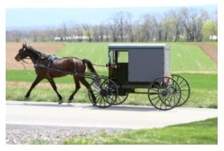 Amishhorsebuggy23kb